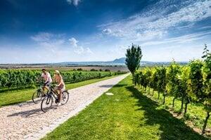 Cyklotrasa na južnej Morave