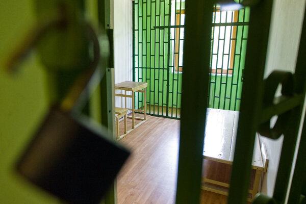 Útočníkov zadržali, pustili na slobodu a potom opäť zadržali a posadili do cely.