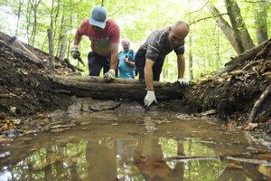 Budovanie prekladaných drevených hrádzí v košických lesoch pri rekreačnej oblasti Alpinka.