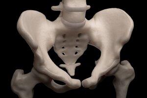 Kostrč je pozostatkom chvosta a tvprí najnižšiu časť chrbtice. Pomáha formovať zadnú stenu panvového prstenca.