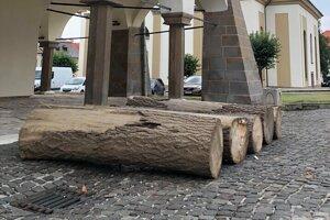 Troch kusov dreva sa už zhostili rezbári. Vyrežú z nich Majstra Pavla, Levočskú bielu pani, kata a žobráka.