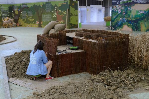 Príprava Agrokomplexu je v plnom prúde.