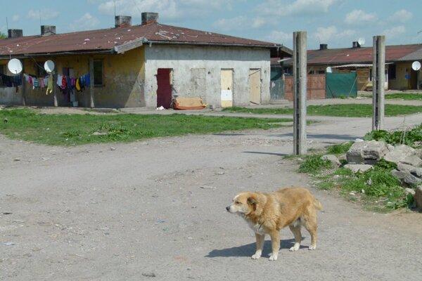 Na Ladislavovom Dvore je nahlásených 130 osôb. Celkový počet obyvateľov sa ale odhaduje vyšší.