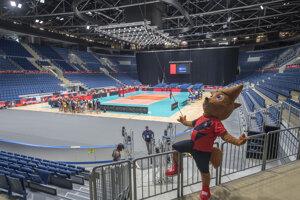 Na snímke oficiálny maskot ME vo volejbale žien ACE počas predstavenia 20. augusta 2019 v Bratislave. Slovenské volejbalistky odohrajú skupinovú fázu ME v Bratislave na zimnom štadióne Ondreja Nepelu.