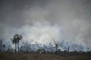 Požiar v Amazonskom pralese v brazílske oblasti Altamira.