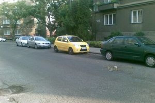 Niektorí vodiči sú nepoučiteľní a pravidelne, vytrvalo a na zlosť všetkým ostatným zablokujú naraz dve miesta.