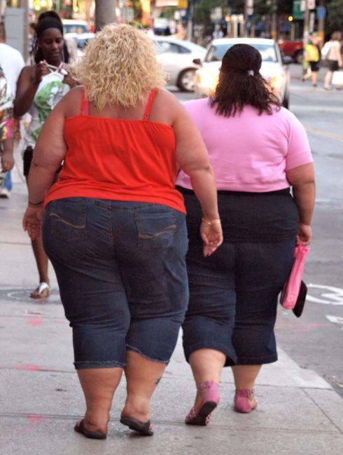 obezitatext01.jpg