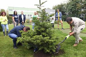 Oficiálne vysadenie prvého stromčeka z 300-tisíc.