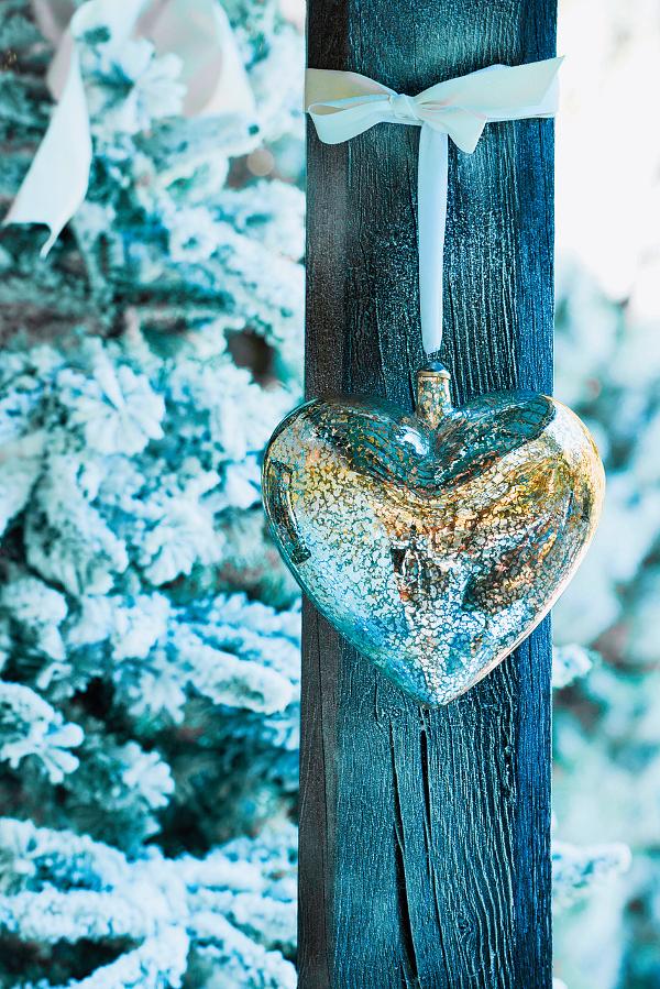 snehobiele_next.jpg
