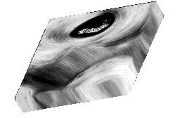 Trojrozmerný mikroskopický pohľad do vnútra ľudskej stehnovej kosti. Zreteľné sú prírastkové línie, ktoré zodpovedajú približne osemdňovému biorytmu. Čierny otvor je cievny kanál.