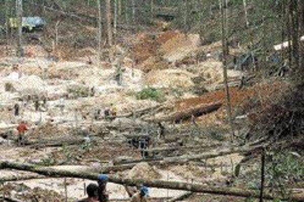 Pohľad do amazonského pralesa, ktorý ochrancovia prírody nevidia radi. Človekom poškodené oblasti môže sucho zasiahnuť oveľa rýchlejšie ako zdravý les.