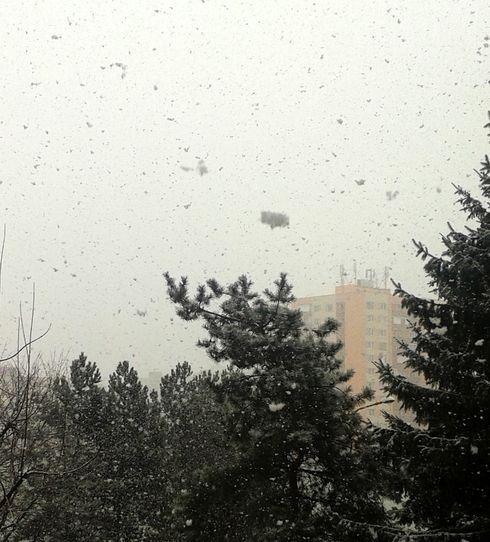 sneh1.jpg