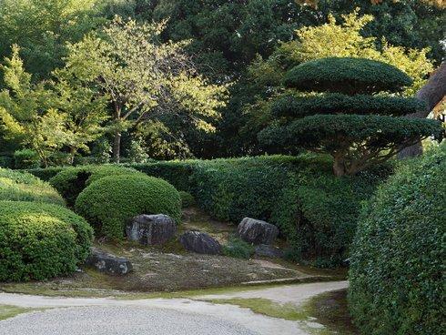 foto-3_jiko-in-garden_strihane-dreviny_1_r7264_res.jpg