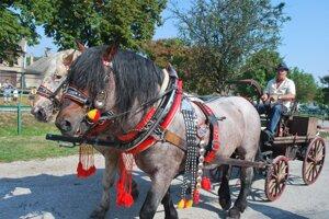 Ručnú striekačku dotiahli dva ťažné kone.
