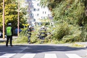 Spadnutý strom na Podunajskej ulici v Bratislave.