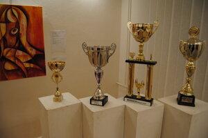 Na výstave nechýbajú ani športové trofeje.