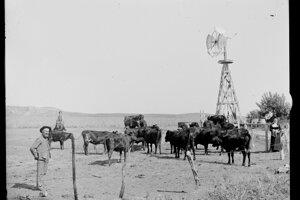 Farmári začali rýchlo využívať Gliddenov vynález.