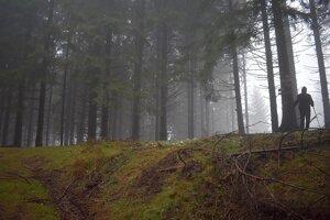 Les vyzerá naozaj tajomne. Aj Orgoňova Kýčera je opradená tajomstvom.