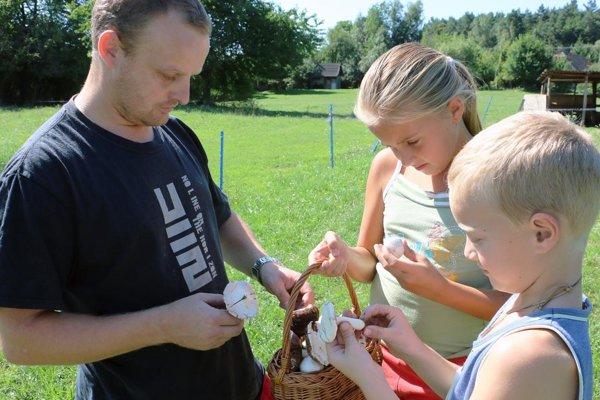 Pečiarky nazbieral na svojom dvore Juraj Richter s deťmi.