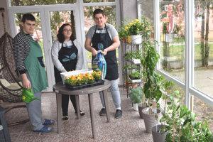 Zimná záhrad v Spojenej škole v Leviciach.