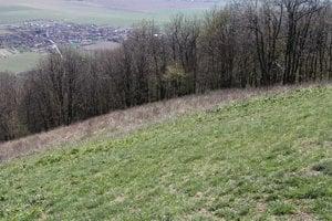 Zo slepého vrchu mali Kelti výborný výhľad do krajiny.