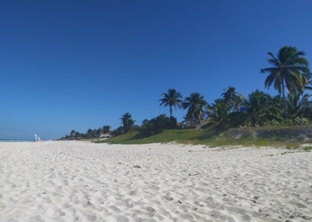 Karibské pláže sú typické bielym pieskom a majestátnymi palmami.