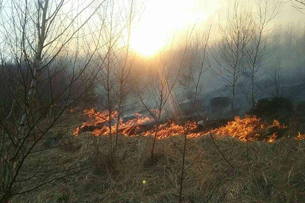 Obvod plochy zasiahnutej požiarom bol približne 1800 metrov