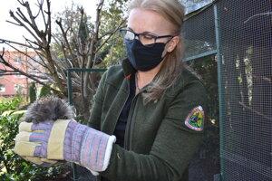 O ježa sa starala environmentalistka Anna Macková.