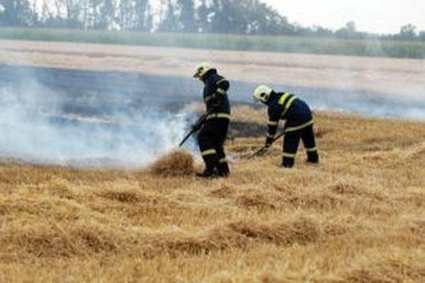 Vypaľovanie trávy hasiči v tomto období neodporúčajú.