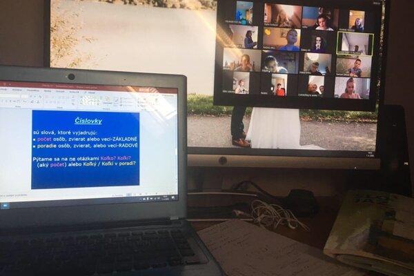 Online vyučovanie.