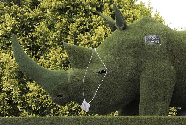 Socha nosorožca s ochranným rúškom v parku Easigrass v Kapskom meste.