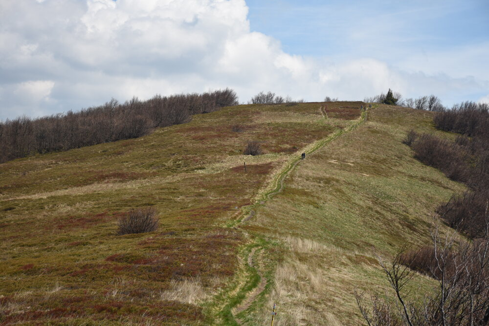 Pohľad na vrchol Ďurkovec zo Sedla pod Ďurkovcom.