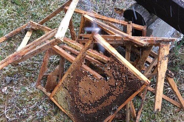 Medveď po sebe zanechal rozbitý úľ.