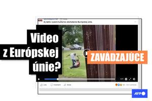Na slovenskom Facebooku sa objavilo video, na ktorom černoch brutálne zbije bielu ženu, pričom popis videa vytvára dojem, že k fyzickému konfliktu došlo v Európskej únii. Nie je to pravda, video nakrútili v meste Richmond v USA.