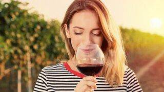Víno a leto: Červeného sa báť netreba, ľad do pohára nepatrí