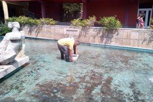 Od utorka je vo fontáne na Terase šikmá plocha pre vtáčiky.