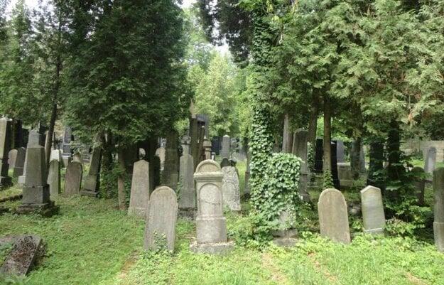 Nový cintorín v Lučenci