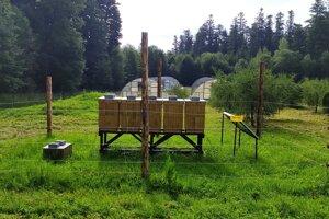 Chov včiel v Tatrách.