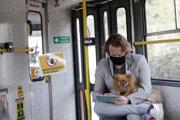 Cestujúci s ochranným rúškom sedí so psom na kolenách v električke v Prahe.