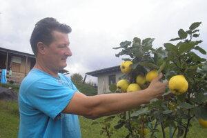 Juraj Špano a jeho duly. Sú ozdobným i liečivým ovocím.