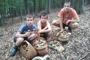 Zľava kamaráti Andrej, Mirko a Ivan v lesoch pri Jedľových Kostoľanoch s košíkmi plnými húb.