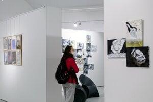 V galérii.................... vystavovala trojica slovenských umelcov.