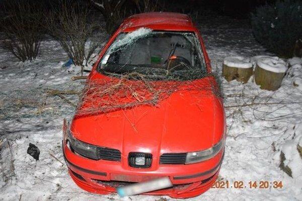 Auto zastavilo pletivo z plota.