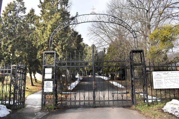 Cintorín Rozália.