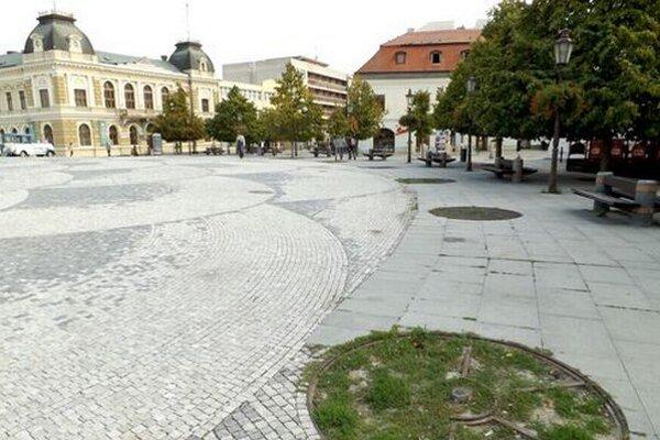 Voda, ktorá steká zo Svätoplukovho námestia, ničí stromy na jeho okraji. Viaceré skruže sú už prázdne.