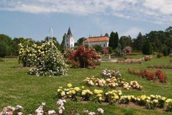 Arborétum býva najkrajšie v máji a júni, vtedy tu kvitne väčšina rastlín.
