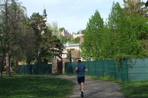 Nepovolený plot v parku.