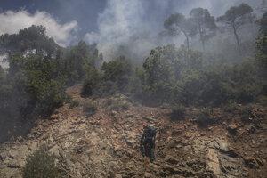 Oheň dosiaľ podľa odhadov zničil viac než 55 štvorcových kilometrov borovicového lesa.