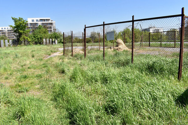 Pozemky na Medickej, kde by mala stáť nová tréningová hala.