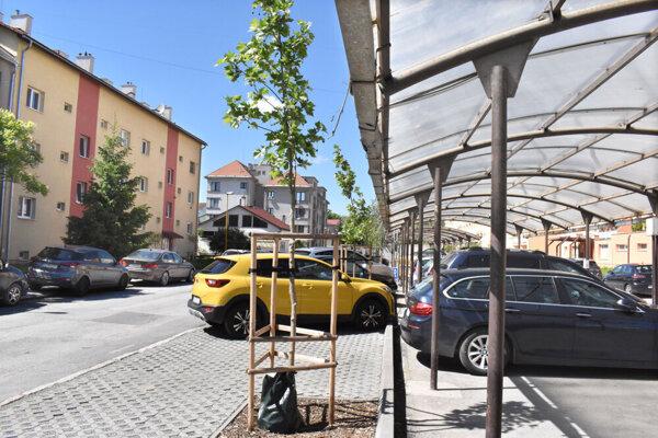 Stačí len chcieť a lokalita nemusí prísť ani o parkovisko, ani o stromy.